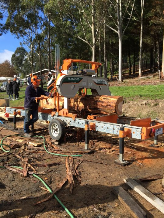 d: Smallscale saw milling and timber drying course 29th Nov. 2019